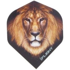 i-Flight Std. Lion flight